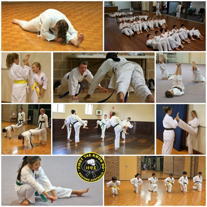 First Martial Arts Perth Western Australia 12548 logo